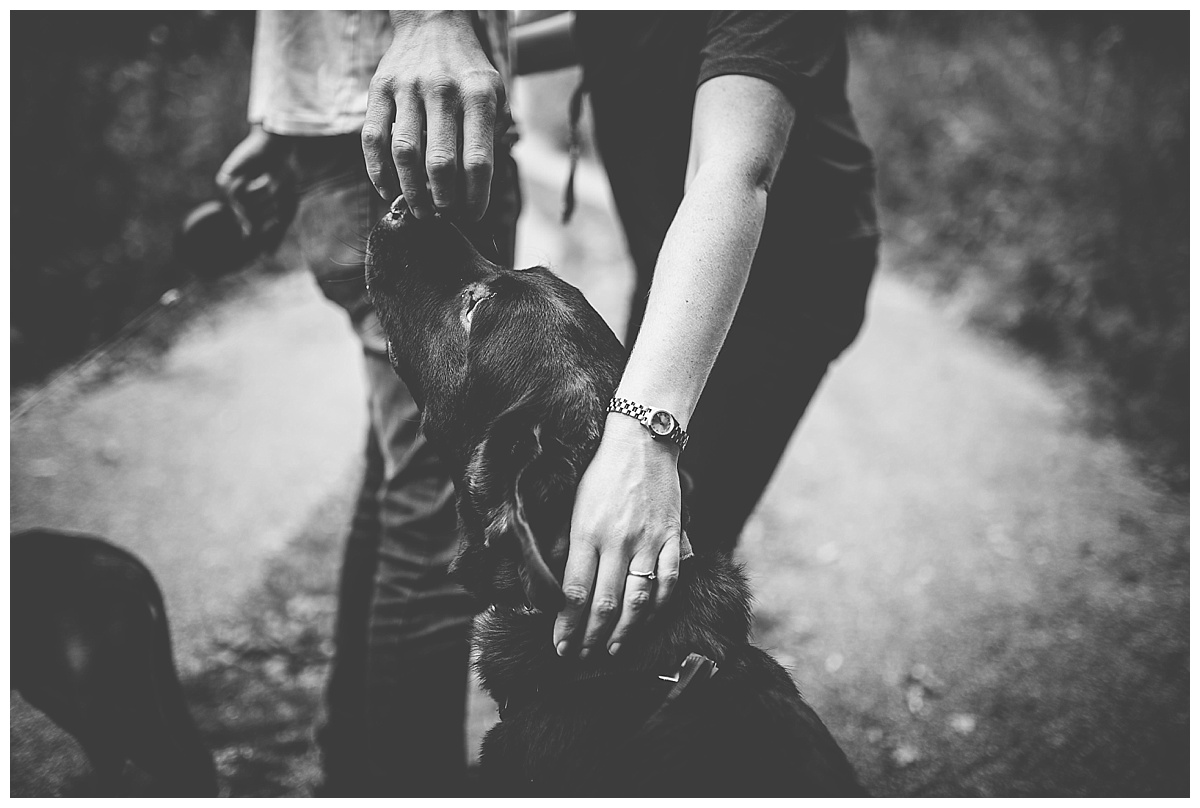 Vicky & Matthew stroking Eric their dog on their pre-wedding session