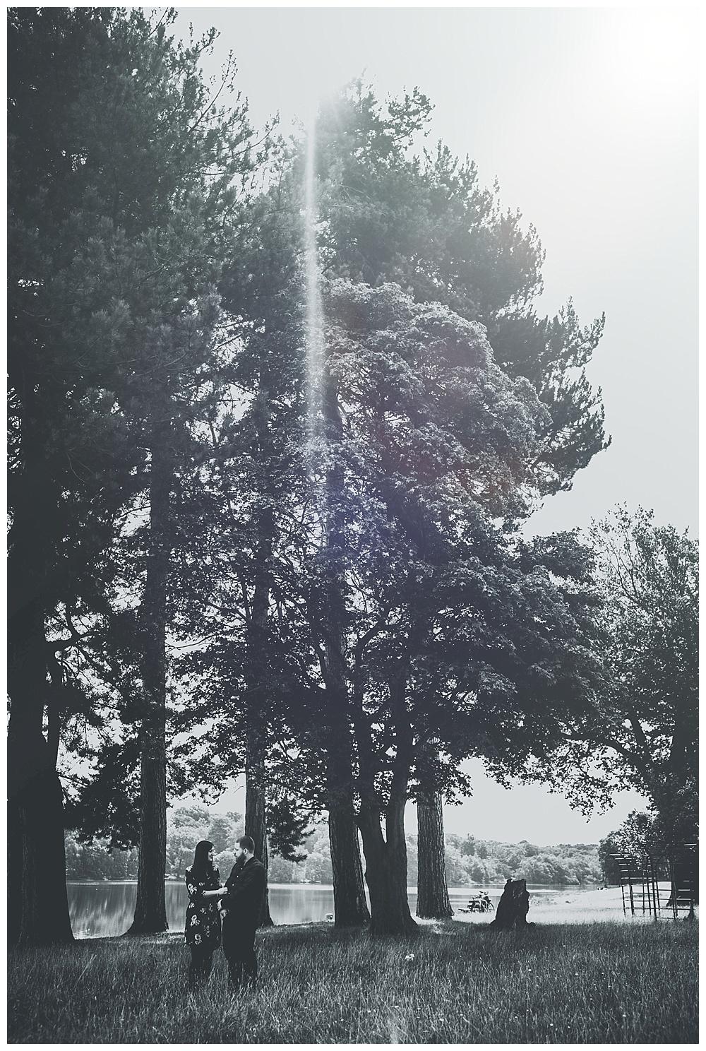 2017-11-05_0013
